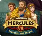 Die 12 Heldentaten des Herkules VII: Das Goldene Vlies Spiel