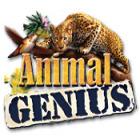 Animal Genius Spiel