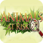 Animals At Risk Spiel