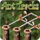 Ant Tracks Spiel