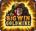Big Win Goldmine Spiel