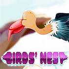 Birds Nest Spiel