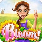 Bloom Spiel