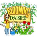 Blooming Daisies Spiel
