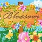 Blossom Spiel