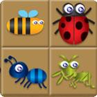 Bug Box Spiel