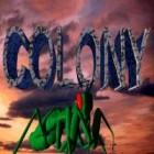 Colony Spiel