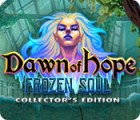 Dawn of Hope: The Frozen Soul Collector's Edition Spiel