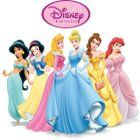 Disney Princess: Hidden Treasures Spiel