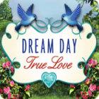 Dream Day True Love Spiel