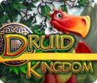 Druid Kingdom Spiel