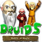 Druids: Battle of Magic Spiel