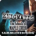 Enigmatis: Die Seelen von Maple Creek Sammleredition Spiel