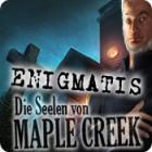 Enigmatis: Die Seelen von Maple Creek Spiel