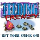 Feeding Frenzy Spiel