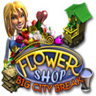 Flower Shop: Big City Break Spiel