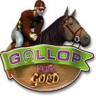 Gallop for Gold Spiel