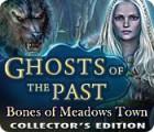 Ghosts of the Past: Die Skelette von Meadows Town Sammleredition Spiel
