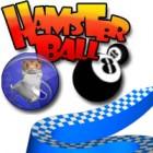 Hamsterball Spiel