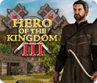 Hero of the Kingdom III Spiel