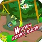 Hidden Angry Birds Spiel