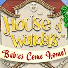 House of Wonders: Babies Come Home Spiel
