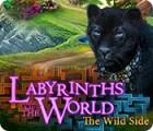 Labyrinths of the World: Die wilde Seite Spiel