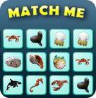 Match Me Spiel