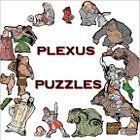 Plexus Puzzles Spiel
