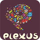 Plexus Puzzles: Rebuild the Earth Spiel