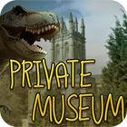 Private Museum Spiel