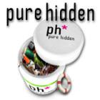 Pure Hidden Spiel