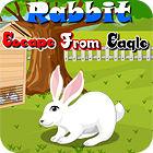 Rabbit Escape From Eagle Spiel