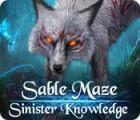 Sable Maze: Gefährliches Wissen Sammlerediton Spiel