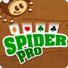Spider Pro Spiel