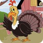 Thanksgiving The Coolest Turkey Spiel
