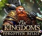 Ferne Königreiche: Die Relikte des Schicksals Spiel