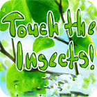 Touch the Insects Spiel